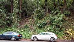 Photo of 0 East Zayante RD, FELTON, CA 95018 (MLS # 81653631)