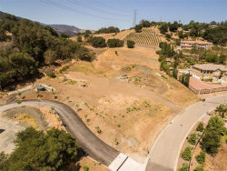 Photo of 20145 Orchard Meadow DR, SARATOGA, CA 95070 (MLS # 81667342)