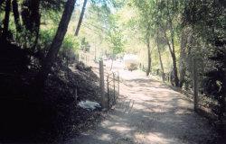 Photo of 000 Highway 9, BOULDER CREEK, CA 95006 (MLS # ML81655247)