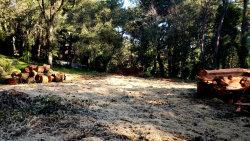 Photo of 0 Creek Trail, WOODSIDE, CA 94062 (MLS # ML81690398)