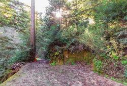 Photo of 10833 Highway 9, BROOKDALE, CA 95007 (MLS # ML81696677)