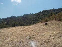 Photo of 13209 Peacock CT, CUPERTINO, CA 95014 (MLS # ML81715882)