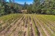 Photo of 0 Loma Prieta AVE, LOS GATOS, CA 95033 (MLS # ML81727331)