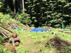 Photo of 0 Sequoia, FELTON, CA 95018 (MLS # ML81755013)