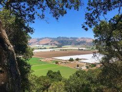 Photo of 1045 Pajaro Hills Ct, WATSONVILLE, CA 95076 (MLS # ML81771657)