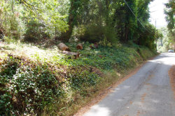 Photo of 131 Shelden RD, LA HONDA, CA 94020 (MLS # ML81773077)