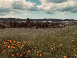 Photo of 18211 Murphy Hill Rd, AROMAS, CA 95004 (MLS # ML81798713)