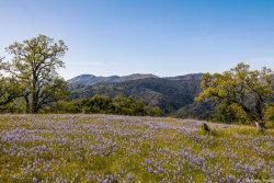 Photo of 24 Long Ridge TRL, CARMEL, CA 93923 (MLS # ML81817625)