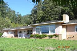 Photo of 4931 Pescadero Creek RD, PESCADERO, CA 94060 (MLS # 81614937)