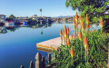 Photo of 261 Surfbird ISLE, FOSTER CITY, CA 94404 (MLS # 81651550)