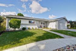 Photo of 1037 Pinenut CT, SUNNYVALE, CA 94087 (MLS # ML81684218)
