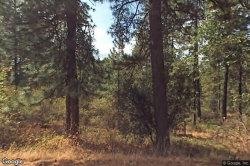 Photo of 1319 HIGDON ROAD 1, WEST POINT, CA 95255 (MLS # ML81697942)