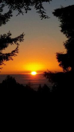 Photo of 14732 Skyline BLVD, WOODSIDE, CA 94062 (MLS # ML81709254)