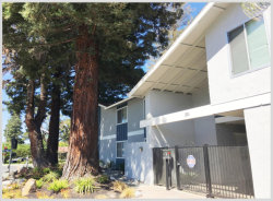 Photo of 255 Easy ST 3, MOUNTAIN VIEW, CA 94043 (MLS # ML81710117)