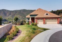 Photo of 133 Elderberry LN, BRISBANE, CA 94005 (MLS # ML81725029)