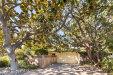 Photo of 668 Wildwood LN, PALO ALTO, CA 94303 (MLS # ML81727944)