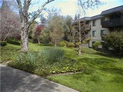 Photo of 7313 Shelter Creek LN, SAN BRUNO, CA 94066 (MLS # ML81738656)