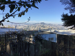 Photo of 251 Alexander AVE, DALY CITY, CA 94014 (MLS # ML81773325)