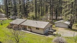 Photo of 2424 Goose Ranch RD, LEWISTON, CA 96052 (MLS # ML81774533)