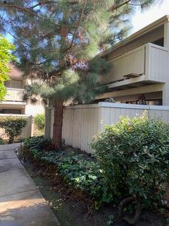 Photo of 952 Kiely BLVD A, SANTA CLARA, CA 95051 (MLS # ML81779495)