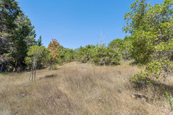 Tiny photo for 1430 Buckingham WAY, HILLSBOROUGH, CA 94010 (MLS # ML81795110)