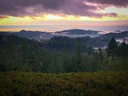 Photo of 920 Hawks Hill RD, SCOTTS VALLEY, CA 95066 (MLS # ML81812444)