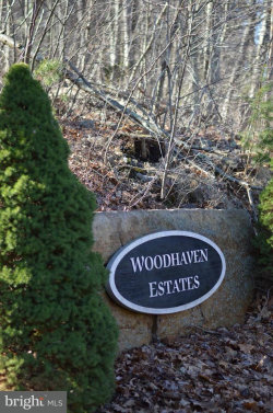 Photo of Lot 3 Wardensville PIKE, Star Tannery, VA 22654 (MLS # 1000200770)