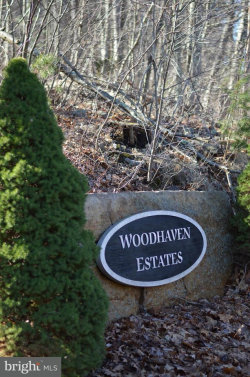 Photo of Lot 4 Wardensville PIKE, Star Tannery, VA 22654 (MLS # 1000200826)