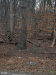 Photo of Thurston ROAD, Frederick, MD 21704 (MLS # 1000263908)