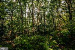Photo of Supinlick Ridge ROAD, Mount Jackson, VA 22842 (MLS # 1001901658)