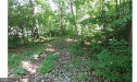 Photo of 10643 Crystal Falls DRIVE, Hagerstown, MD 21742 (MLS # 1001988570)