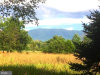 Photo of Whispering Hill Road, Luray, VA 22835 (MLS # 1001995572)