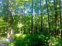 Photo of Lot 5 I Wardensville PIKE, Star Tannery, VA 22654 (MLS # 1002023010)