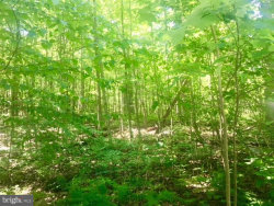 Photo of Lot 5j Wardensville PIKE, Star Tannery, VA 22654 (MLS # 1002023050)