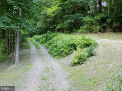 Photo of 0 Frogtown ROAD, Berryville, VA 22611 (MLS # 1002139092)
