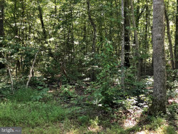 Photo of 1983 Pettie LANE, Rixeyville, VA 22737 (MLS # 1002253862)