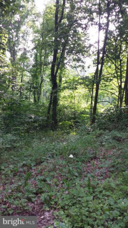 Photo of 0 Roundhill, Mount Jackson, VA 22842 (MLS # 1002278252)