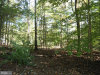 Photo of 4 ACRES Ebenezer ROAD, Bluemont, VA 20135 (MLS # 1009527764)
