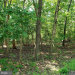 Photo of Bowie COURT, Lusby, MD 20657 (MLS # MDCA178468)
