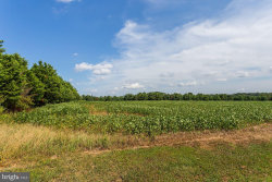 Photo of 26232 Auction Rd Lot 1 Route 313, Federalsburg, MD 21632 (MLS # MDCM122892)