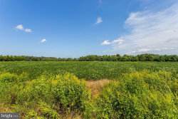 Photo of 26232 Auction Rd Lot 1 Route 313, Federalsburg, MD 21632 (MLS # MDCM122894)