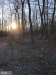 Photo of Back Woods ROAD, Westminster, MD 21158 (MLS # MDCR181498)