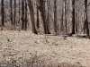 Photo of Mayberry ROAD, Westminster, MD 21158 (MLS # MDCR182574)