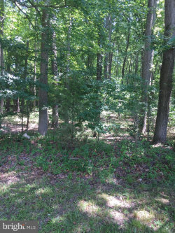 Photo of 0 White Marsh ROAD, Trappe, MD 21673 (MLS # MDTA135796)
