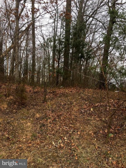 Photo of 11318 NW Leesburg PIKE W, Great Falls, VA 22066 (MLS # VAFX744386)