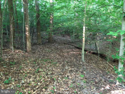 Photo of Washington Mill Road (off), King George, VA 22485 (MLS # VAKG117834)