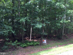 Photo of 241 Traveller STREET, Mineral, VA 23117 (MLS # VALA119428)