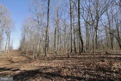 Photo of Meander Run ROAD, Locust Dale, VA 22948 (MLS # VAMA100106)