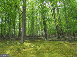 Photo of 440 Steep Hollow LANE, Rileyville, VA 22650 (MLS # VAPA101094)
