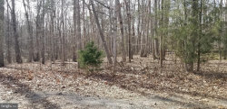 Photo of 12502 Cavalry CIRCLE, Spotsylvania, VA 22551 (MLS # VASP212792)